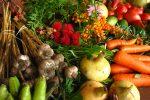 Prodotti alimentari e farmaceutici: una buona legge per ridurre gli sprechi
