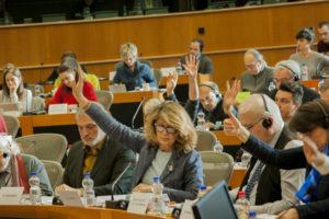 """Servizio europeo di solidarietà, il Forum: """"Grande passo in avanti per la crescita umana e civica dei giovani"""""""