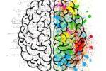 Brains to South: presentati 41 progetti di ricerca